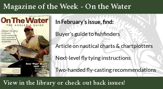 Magazine of the Week Advertisement