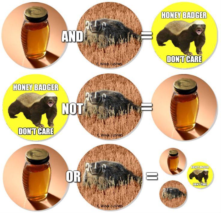 Boolean Logic, honey badger style